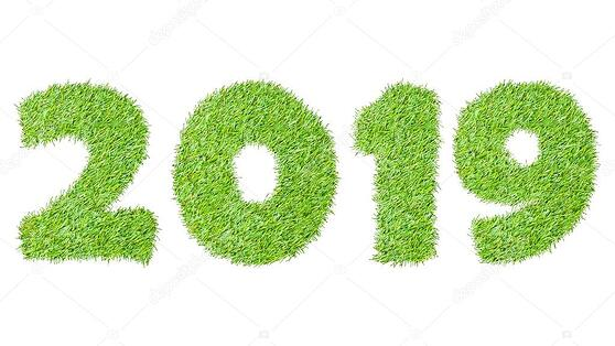 Image result for 2019 grass